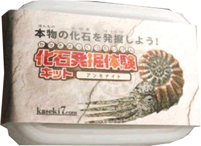 化石キット